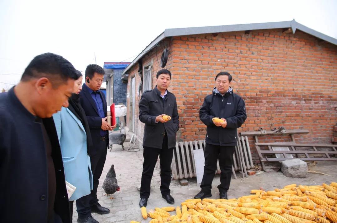 洪非:当好领头羊 做好排头兵 充分发挥好基层党组织在乡村振兴中